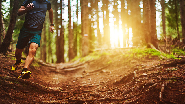 correre nel bosco